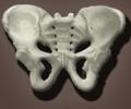 Centro de Osteopatía y Salud